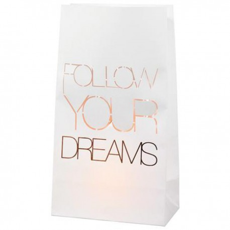Lanterne en papier FOLLOW YOUR DREAMS x 2